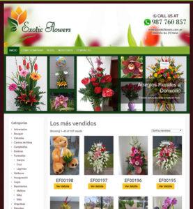 cuento cuesta una pagina web de desarrollo diseño web profesional paginas wed