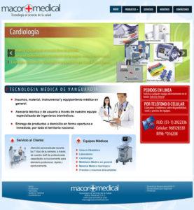 diseño web profesional paginas web para