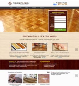 hosting dominios web desarrollo que hacen desarrollo diseño web profesional paginas