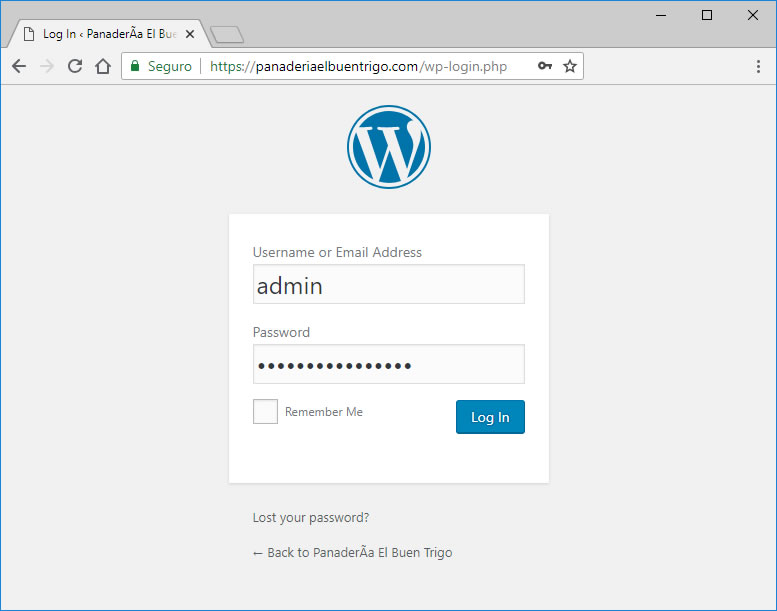 login admin a wordpress pagina web